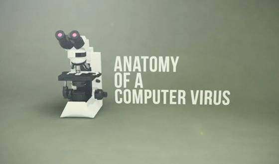 TheeBlog-AnatomyofaComputerVirus